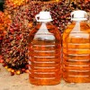 Российский бизнес наращивает импортозамещение за счет закупок пальмового масла