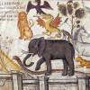 Свящ. Александр Мень. Церковь и животные