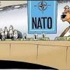 Доктрина медоеда. Как «слабая Россия» запугала «сильный Запад»