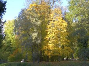 Пушкин, Царское село, Екатерининский парк
