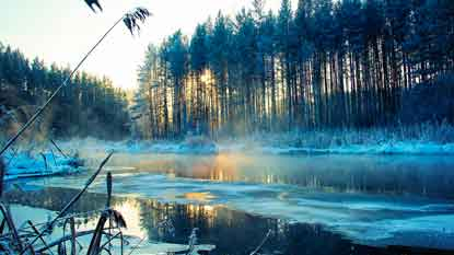 194_10_.Русский-мир