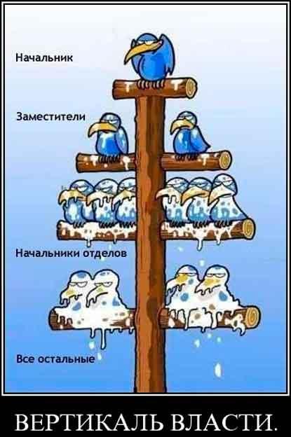 208_12_.Русский-мир