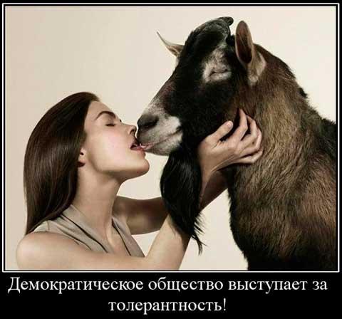 274_01_.Русский-мир