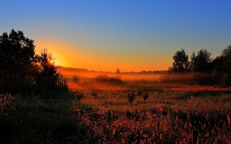 264888__sunset-field_p